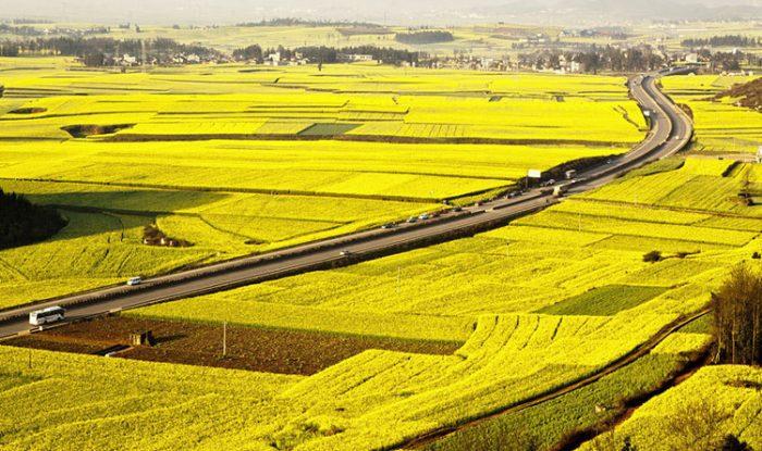 Đất nông nghiệp là gì?