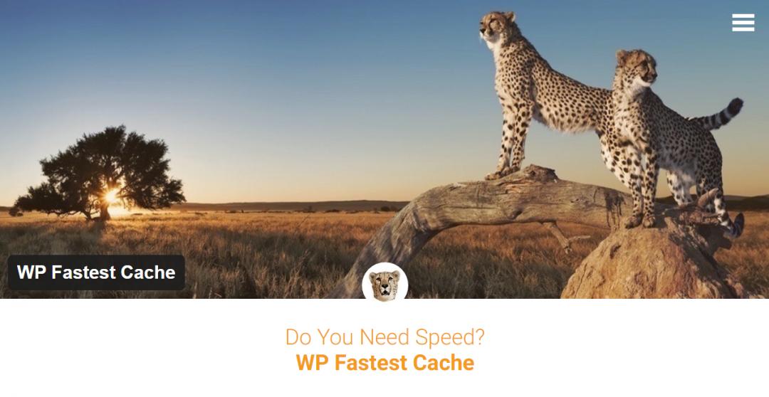Kết quả hình ảnh cho WP Fastest Cache